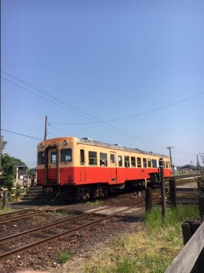 Img_0406-1